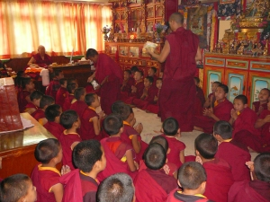 rinpoche and young monks2